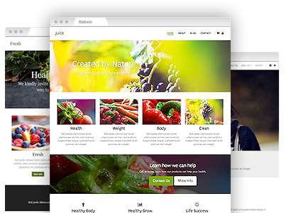 A variety of easy–to–customize website templates
